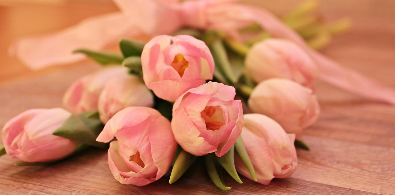 Tanie i wciąż piękne tulipany